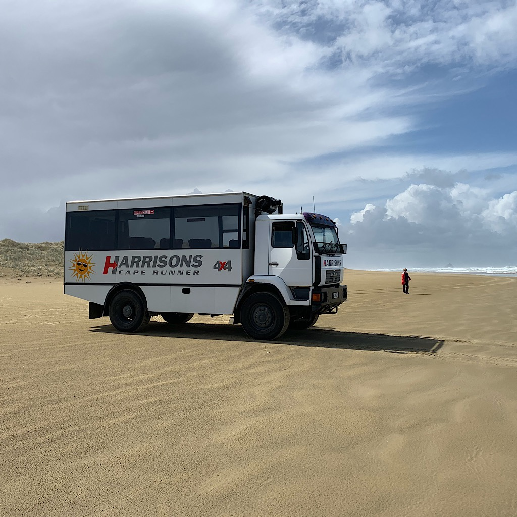 A tour bus drives right out on the beach, wondering where I came from.