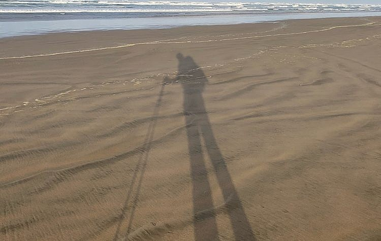 Legs like stilts on the Ninety-Mile Beach in the far, far north of New Zealand.