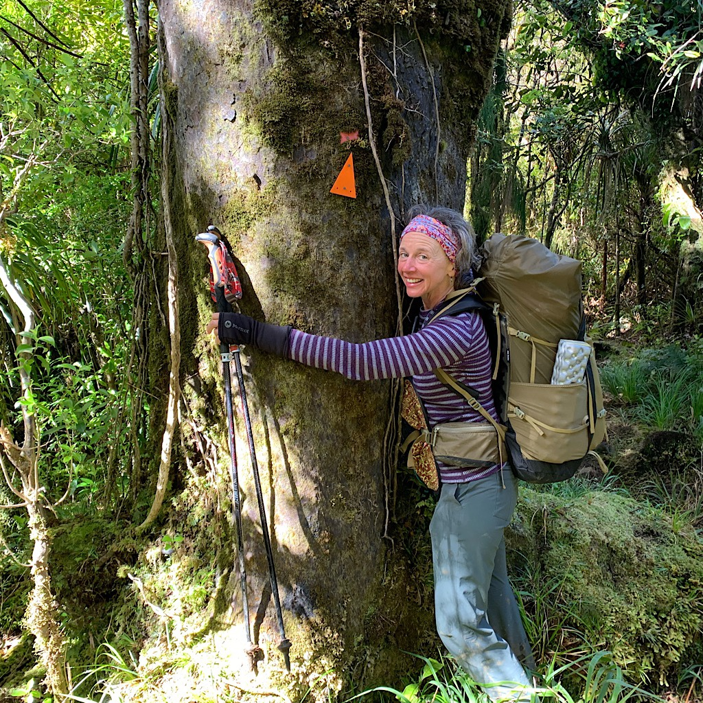 Blissful hugs a Kauri covered in supplejack vines.