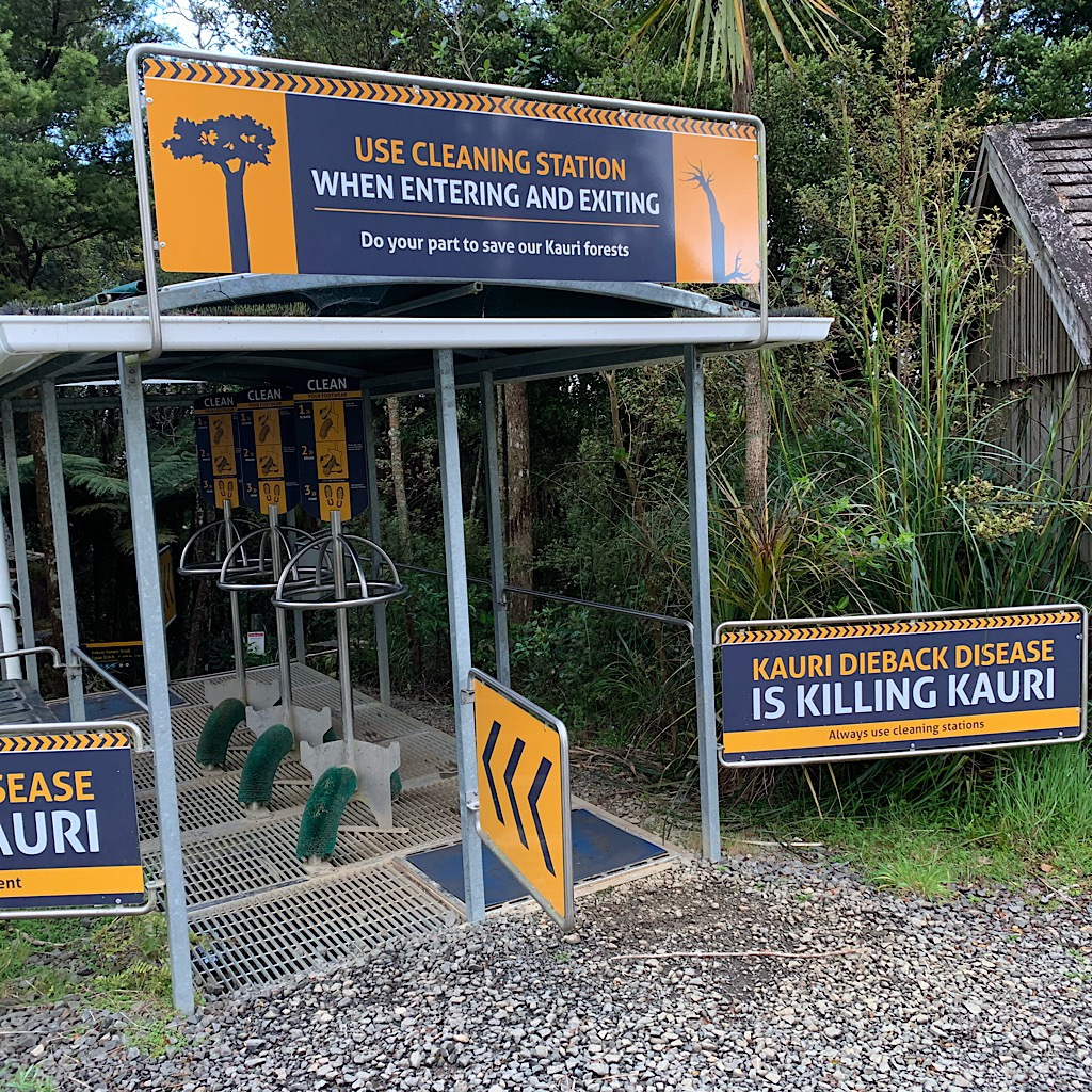 A cleaning station for our shoes to try to stop the spread of Kauri Dieback.