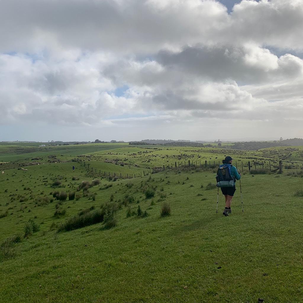 Irene moves quickly on the wide open pastureland near Kerikeri.