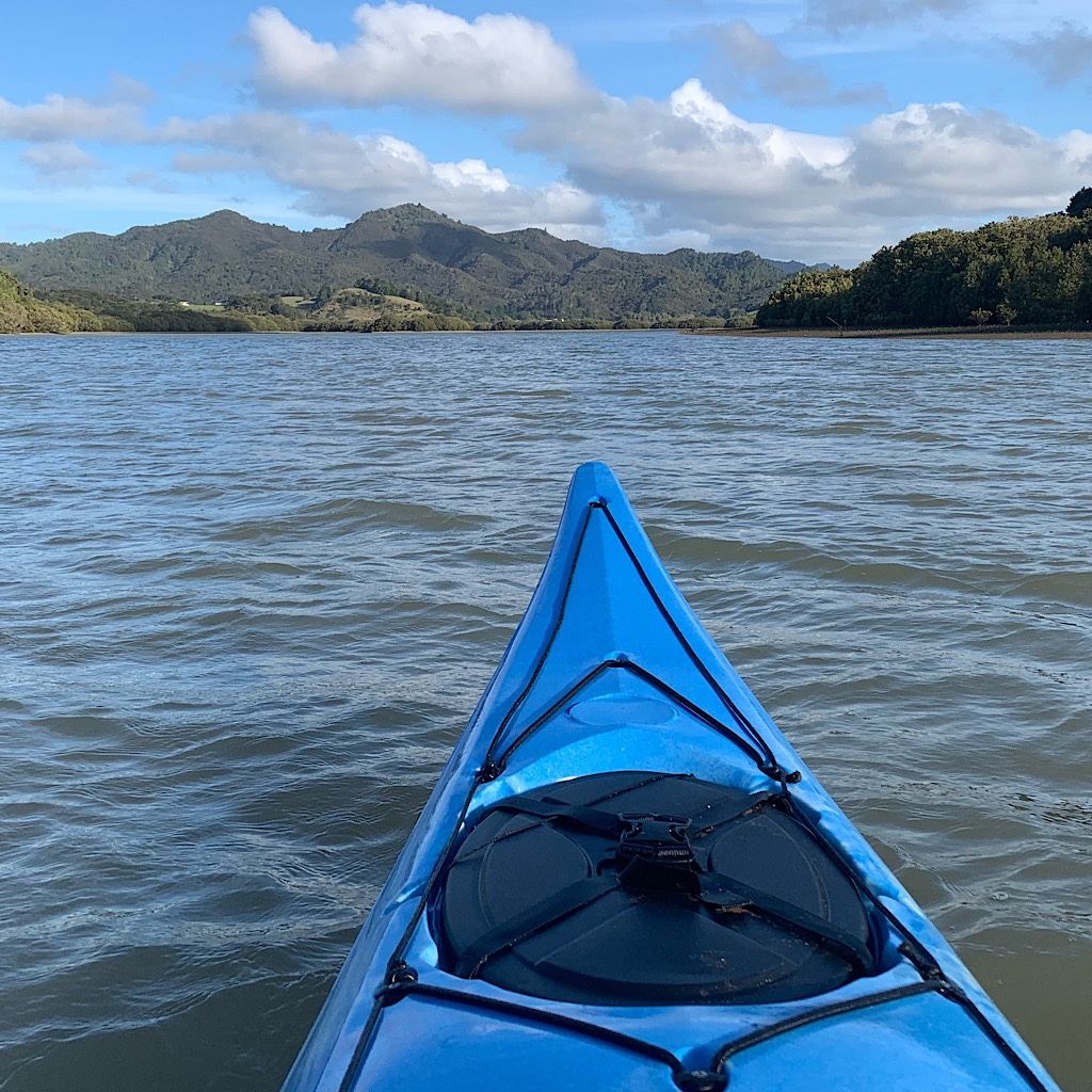 The tide pushed my kayak right up the gorgeous Waikare Estuary.