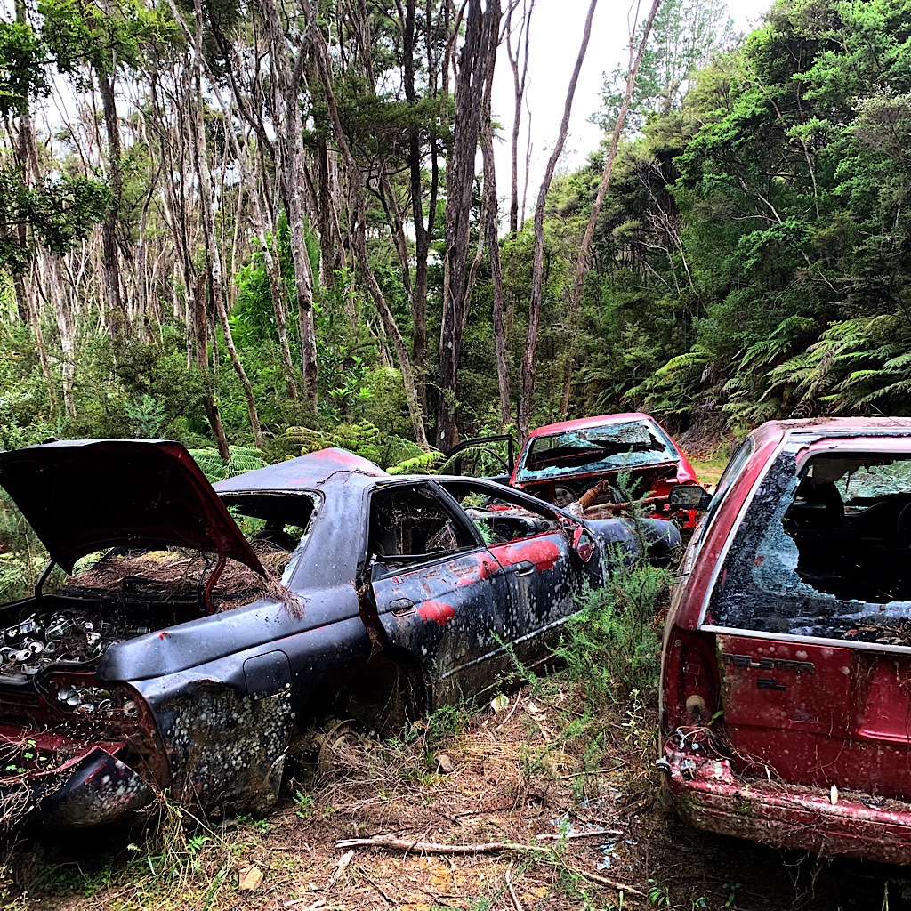 Junked cars along the Te Araroa.