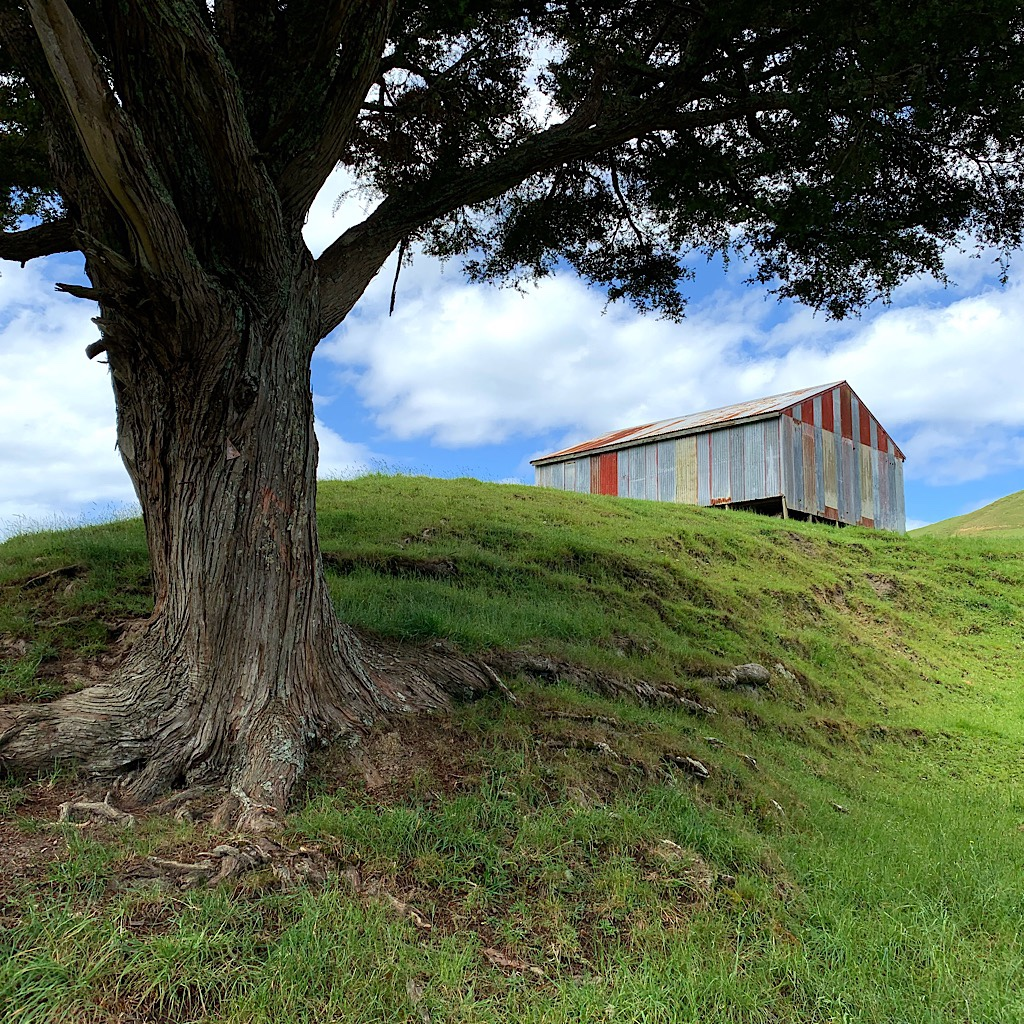 A colorful barn near Whananaki.