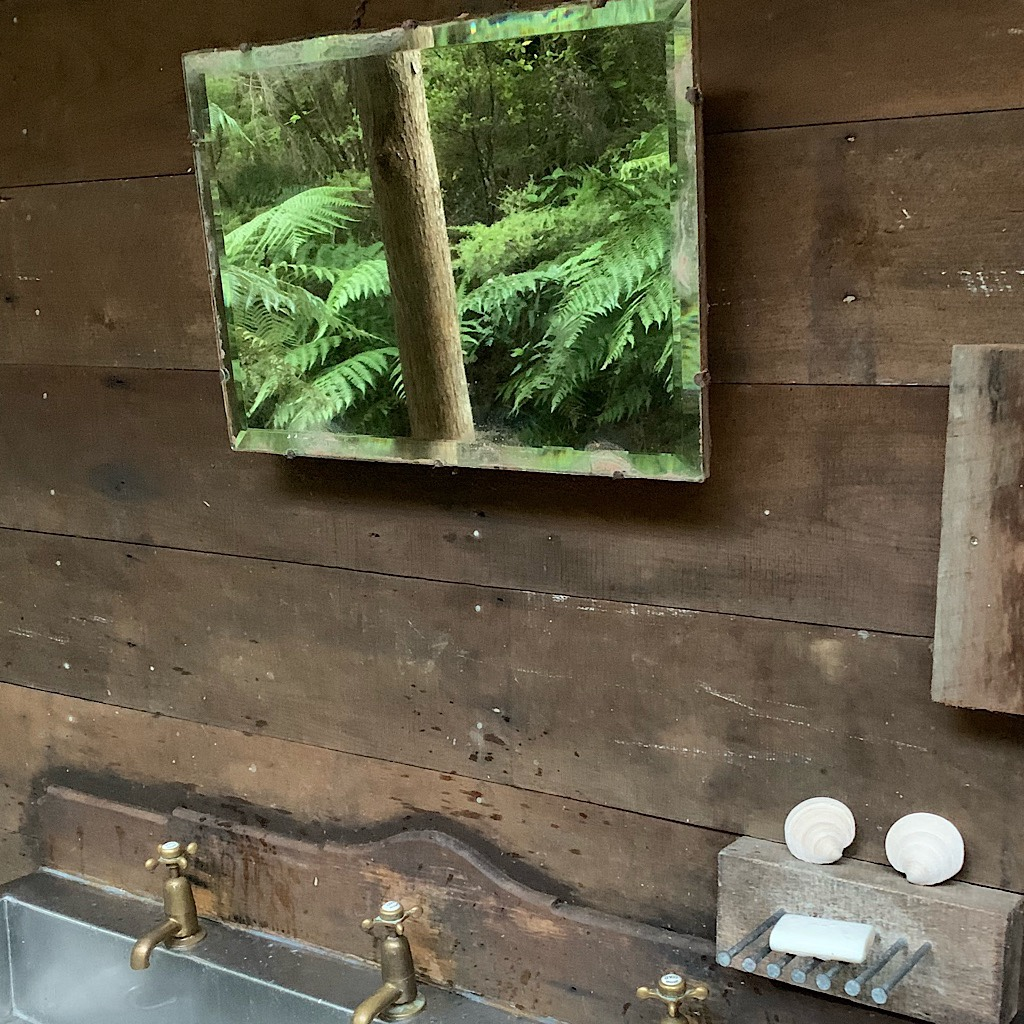 Ferns reflected in a mirror upon the communal sink at Nikau Bay Camp.