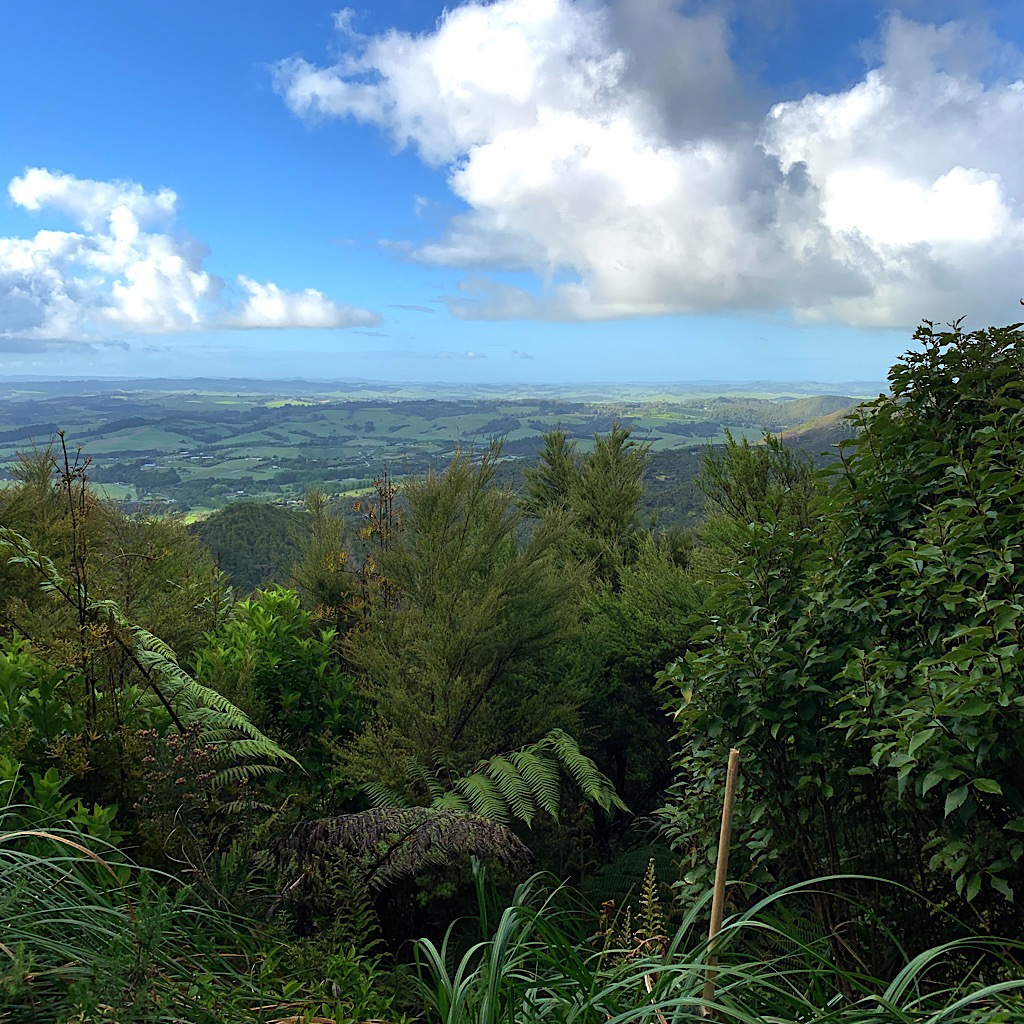 Stunning views for miles from the ridge before heading back to the beach.
