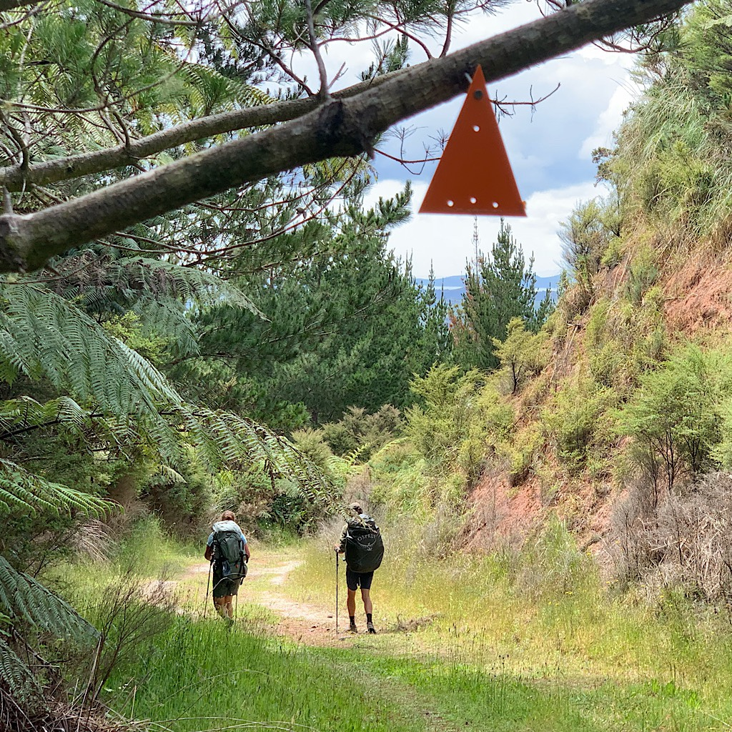 Floris and Merjolein walk ahead on the forest road under the TA marker.