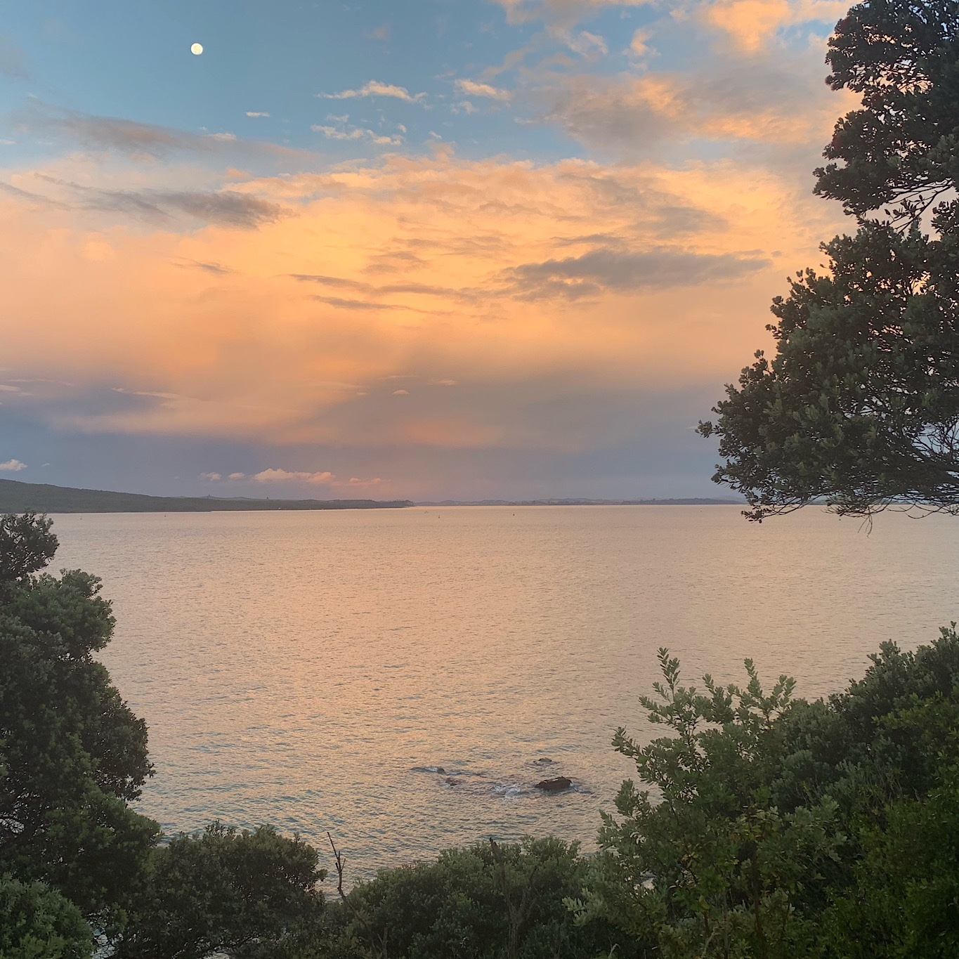 After pouring rain, the sun came out at North Head and gave me a gorgeous sunset and moon.