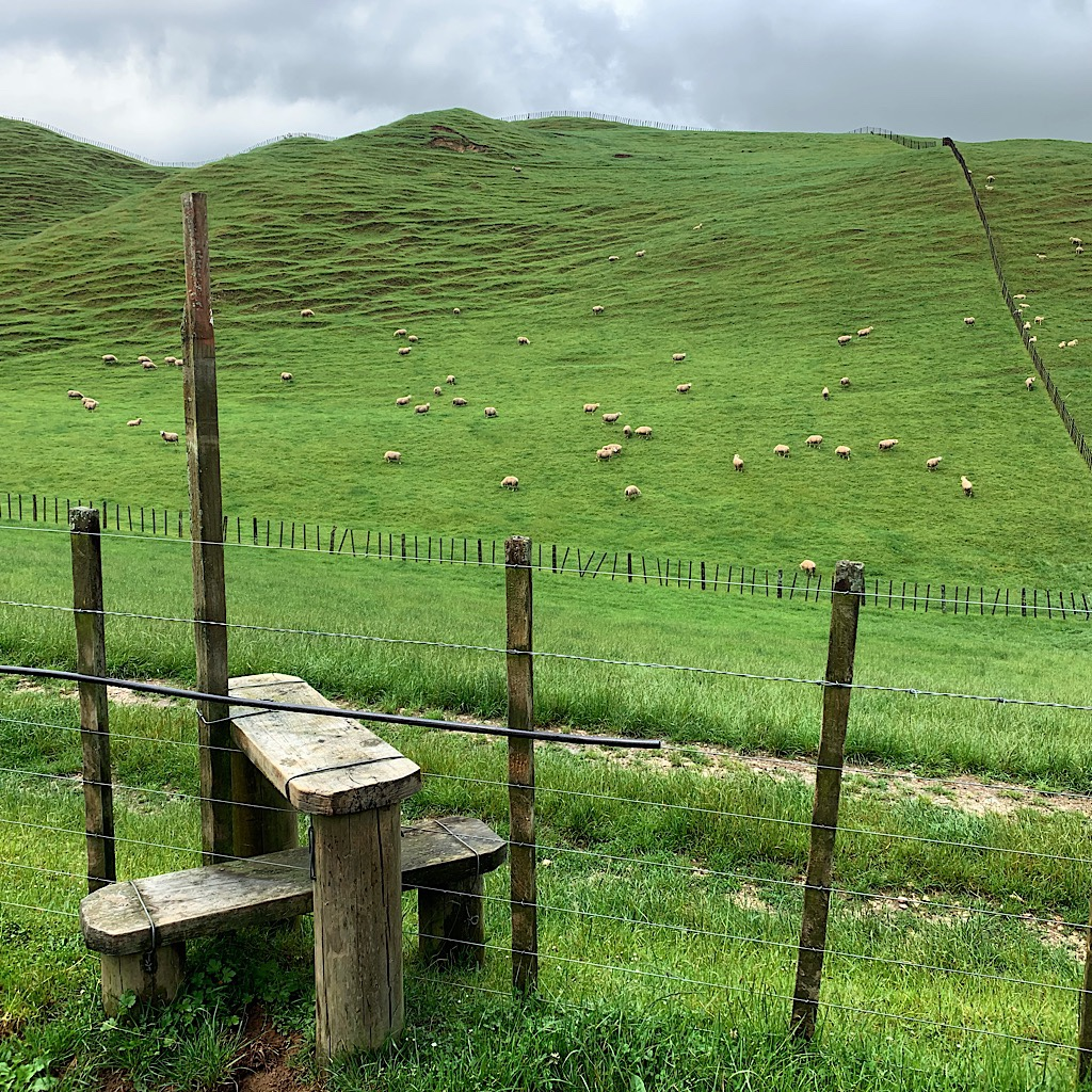 This reasonably well-built stile with hand post though missing any traction mats was one of thousands I used when crossing New Zealand on foot.