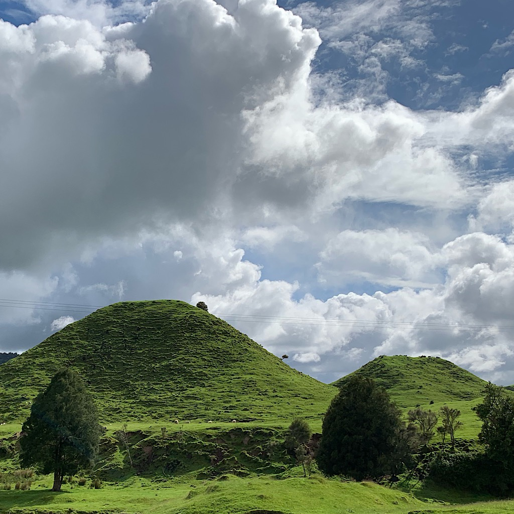 "The landscape of Waikato/King Country is ""karst"" meaning built on sandstone with cliffs, caves and oddly shaped humps."