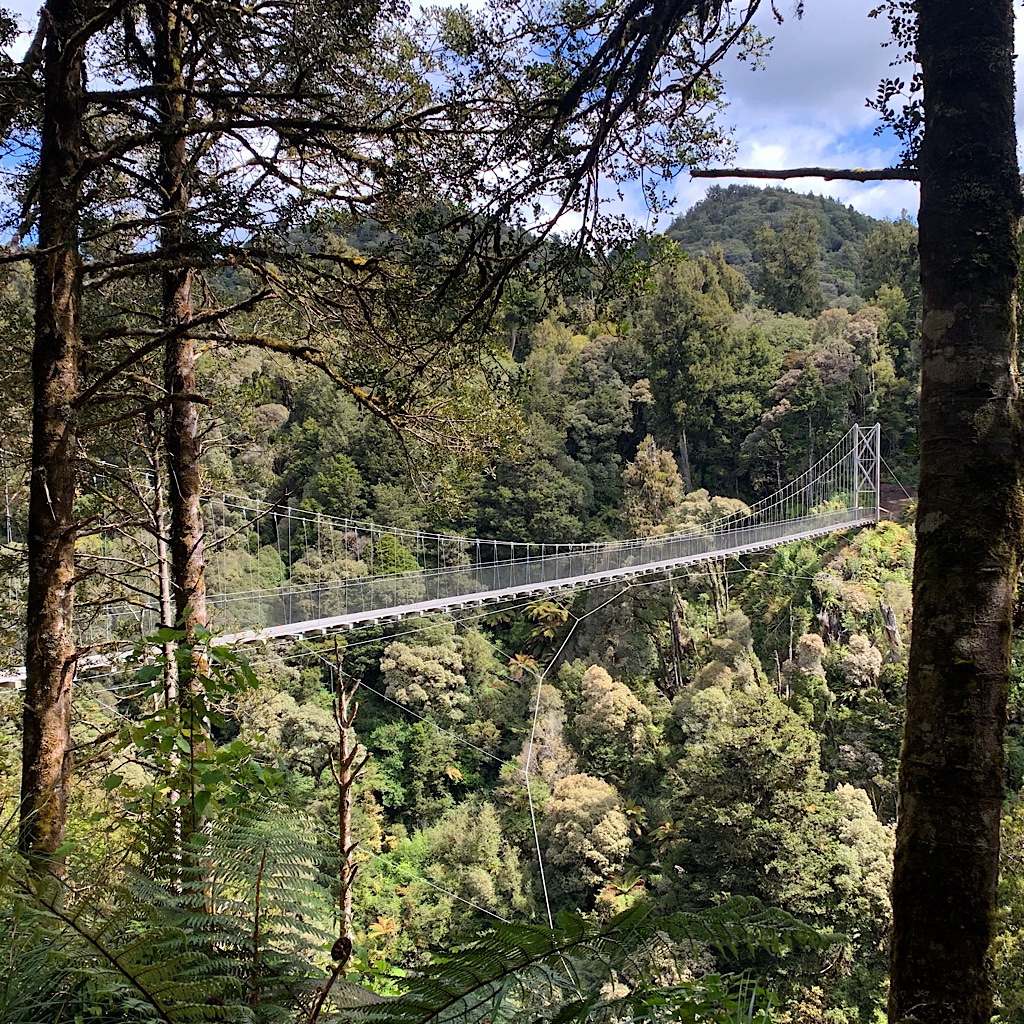 The incredible architecture of Bog Inn Creek suspension bridge shares its artistry with the bridges of Pureora's forestry past, except in the olden days, there were no handrails.