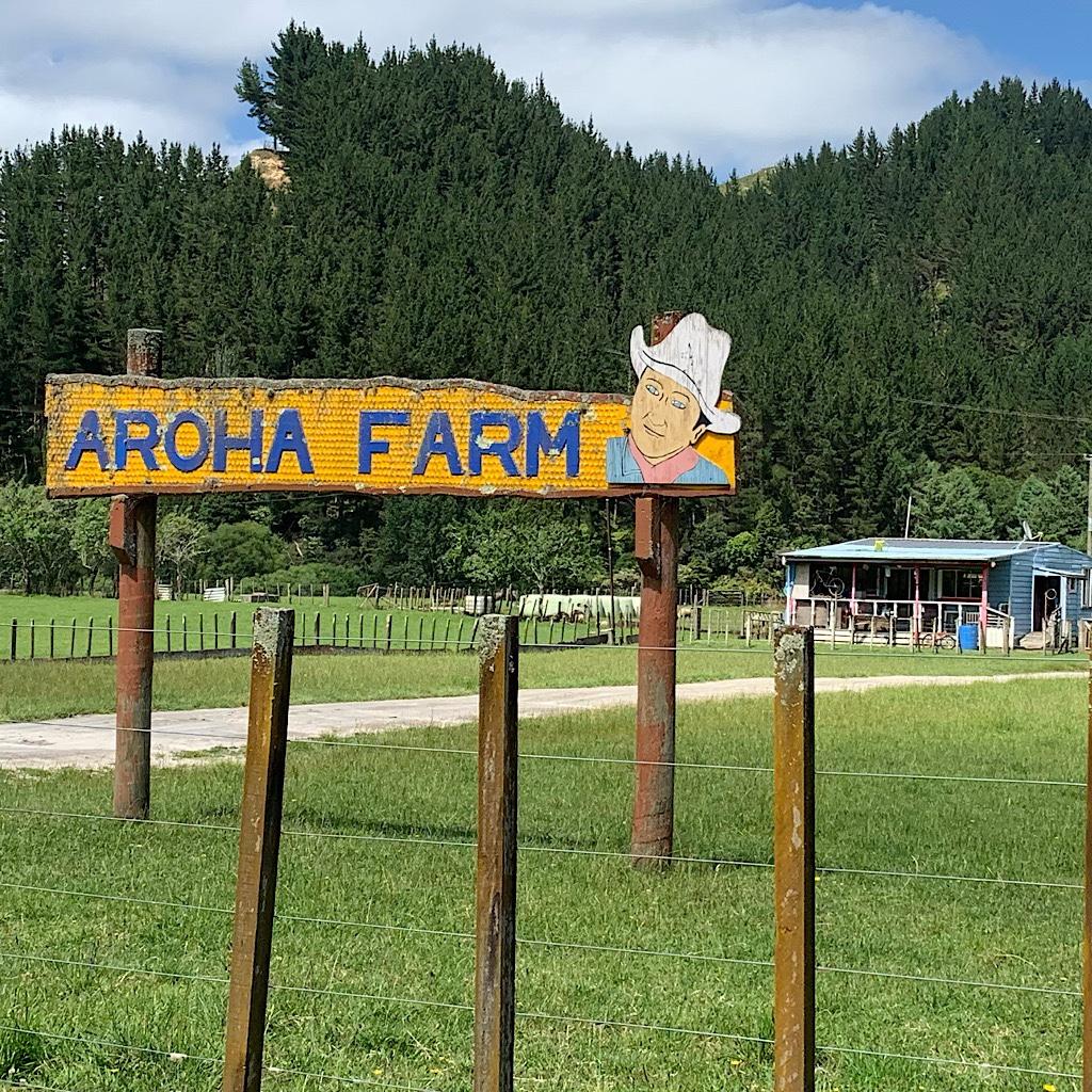 "Aroha means ""love"" in Maori."