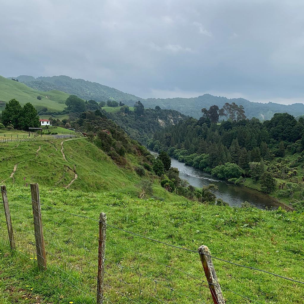The Whanganui River from Hikumutu Road.