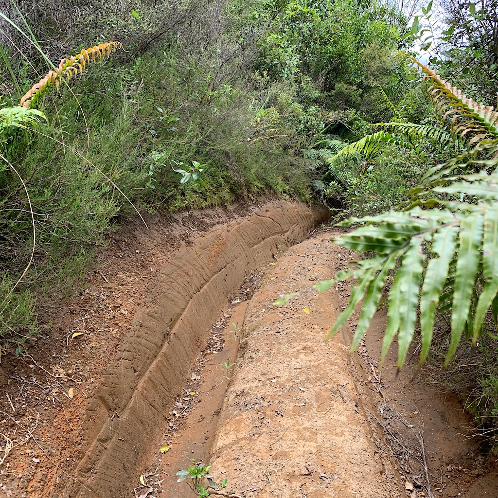 Barely fit for walking, I'm not sure I'd take a mountain bike on this trail.