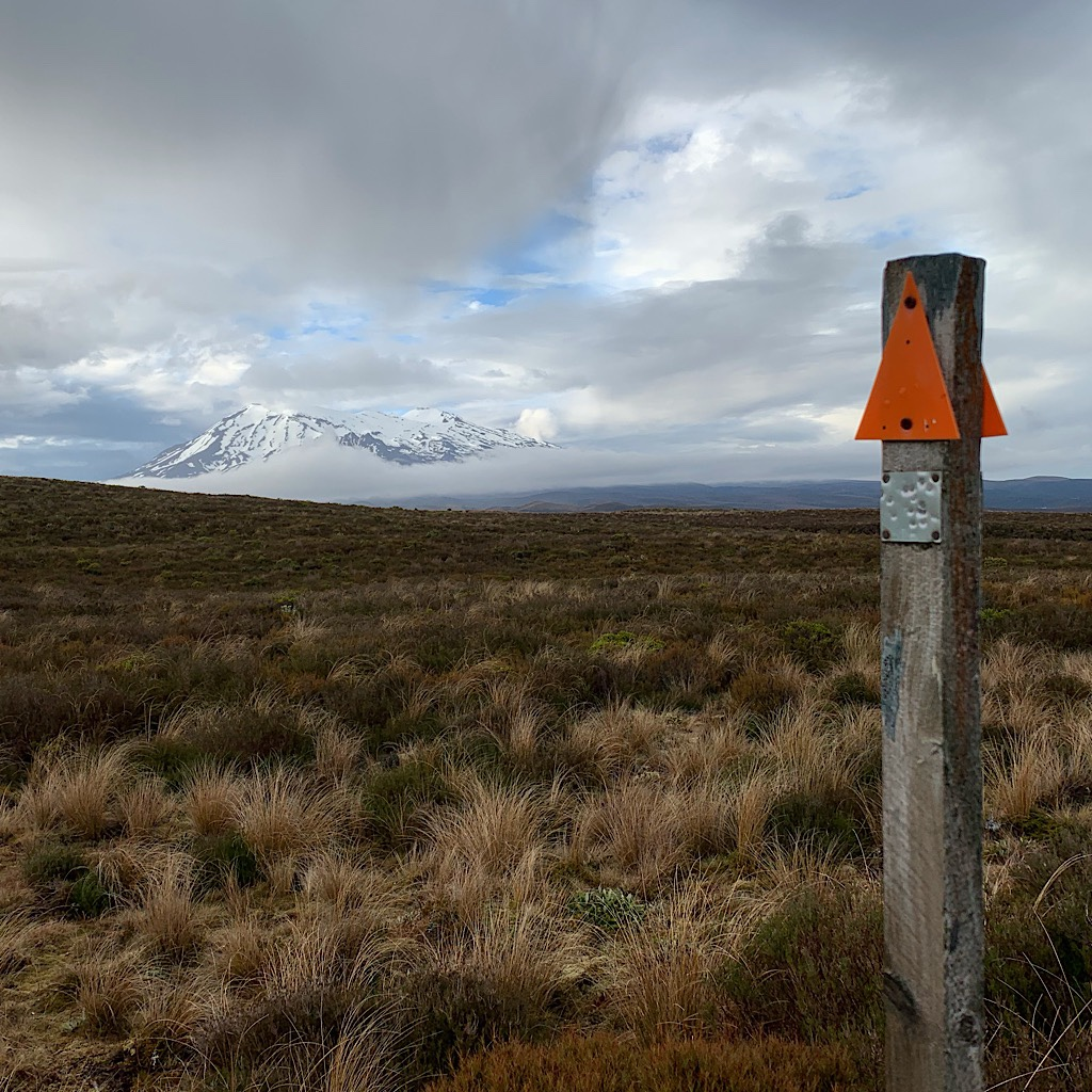 My first glimpse of Ruapehu from the Mangatepopo Track.