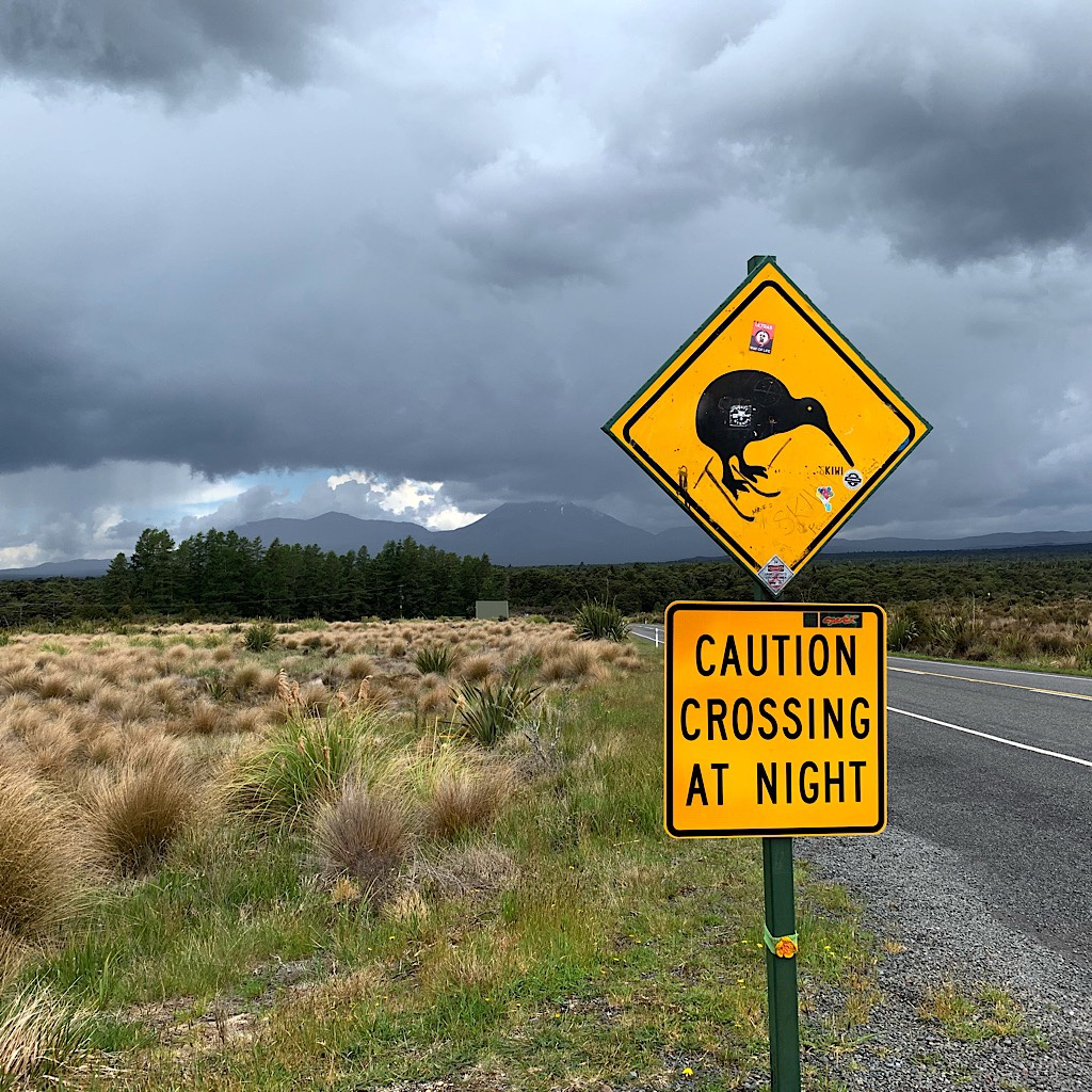The most famous sign in New Zealand, looking back at Mount Tongariro, Mount Ngauruhoe and thunderstorms.