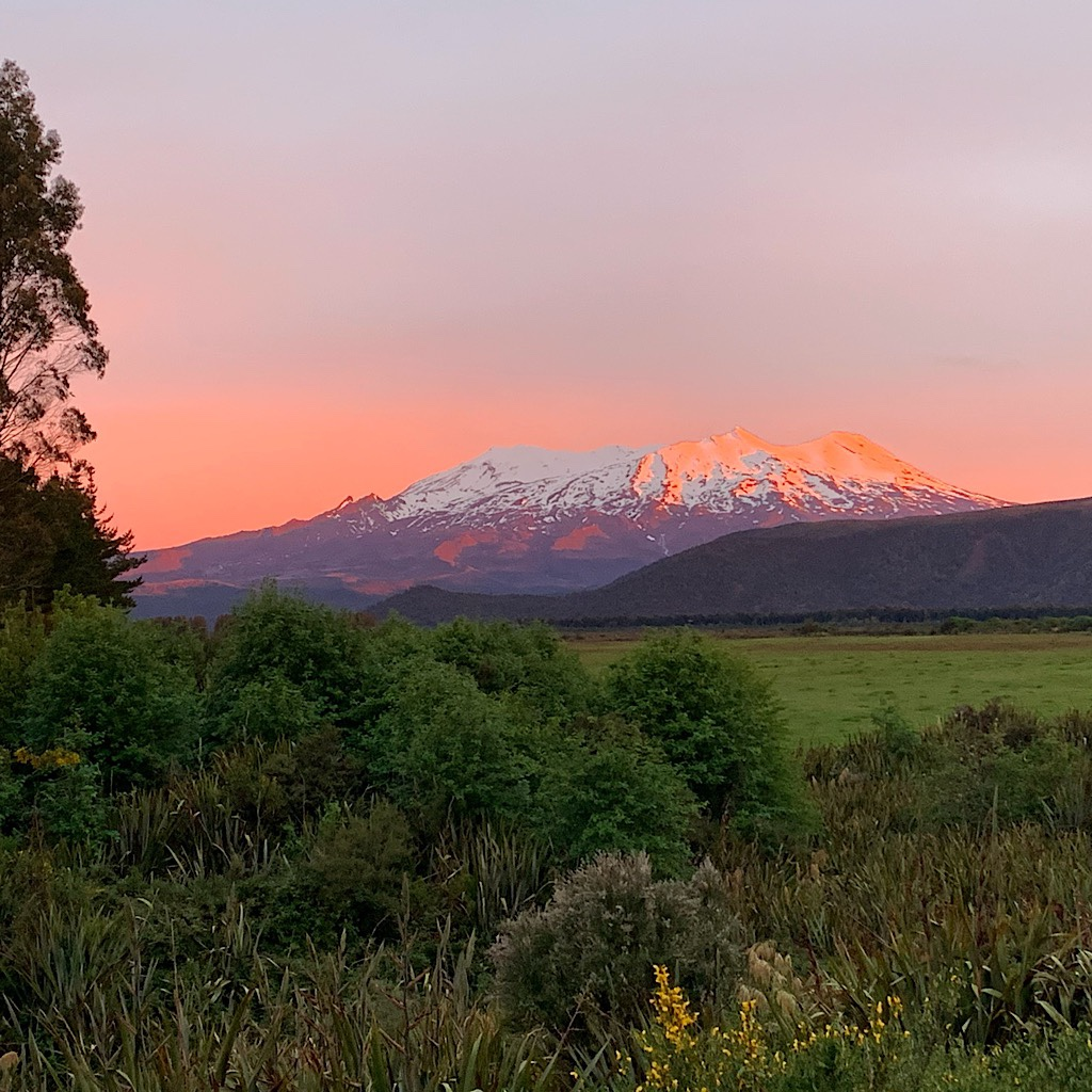 Ruapehu in alpine glow from National Park.