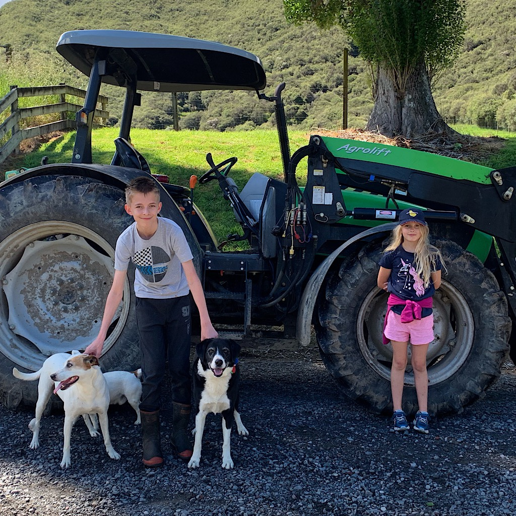 Local kids with dogs and tractor.