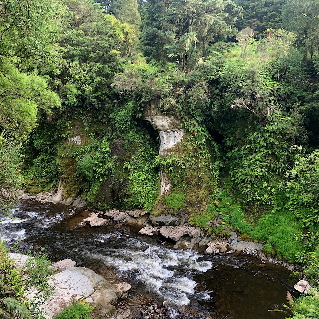 The road follows the Retaruke River all the way to where it joins with the Whanganui.