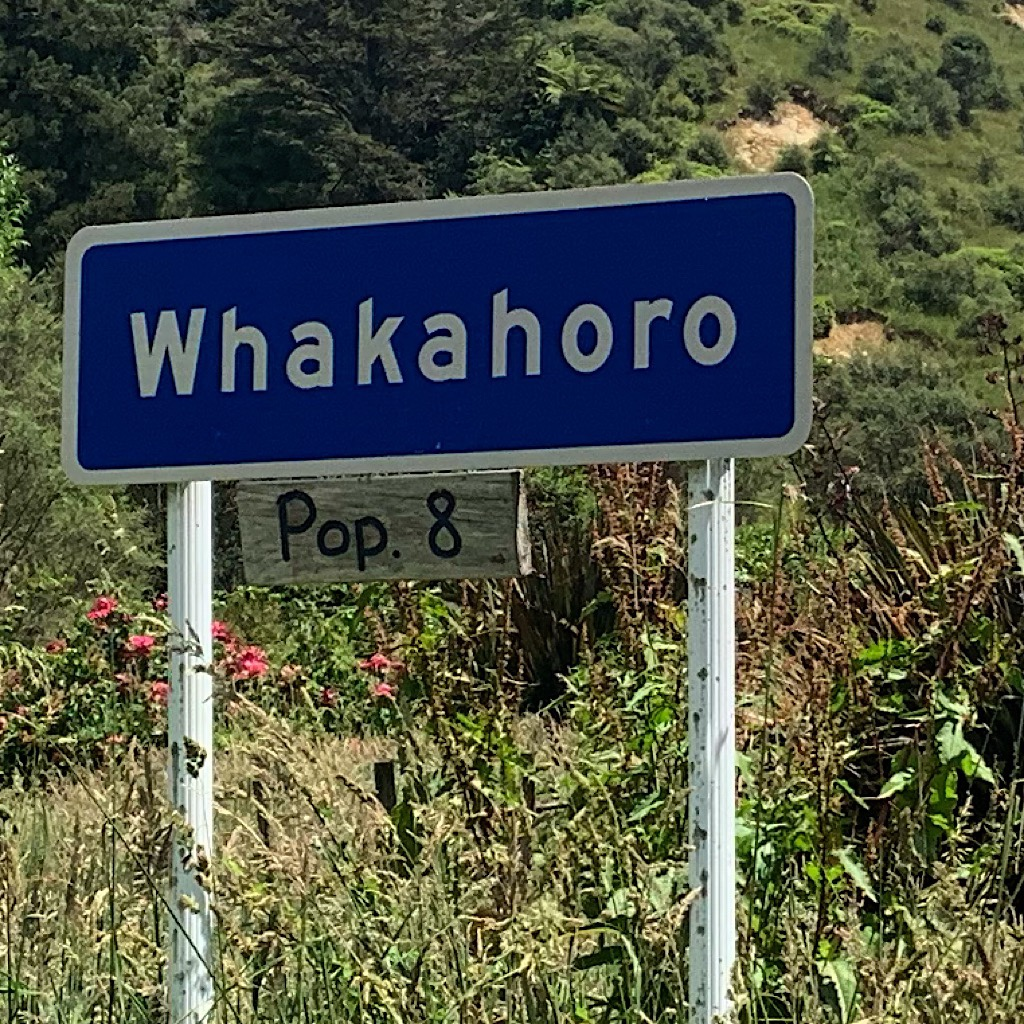 Whakahoro – pronounced fa-ka-ho-ro – is a tiny village with on the Whanganui River with camping and bunks.