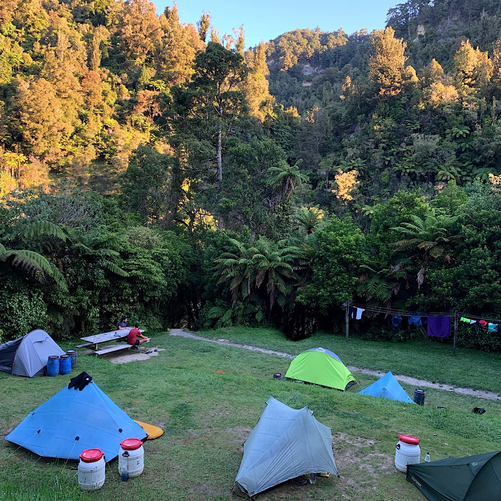 Again, I chose to camp outside rather than stay in the crowded and loud bunk house. We saw rare lesser short-tailed bats flying above us that night.