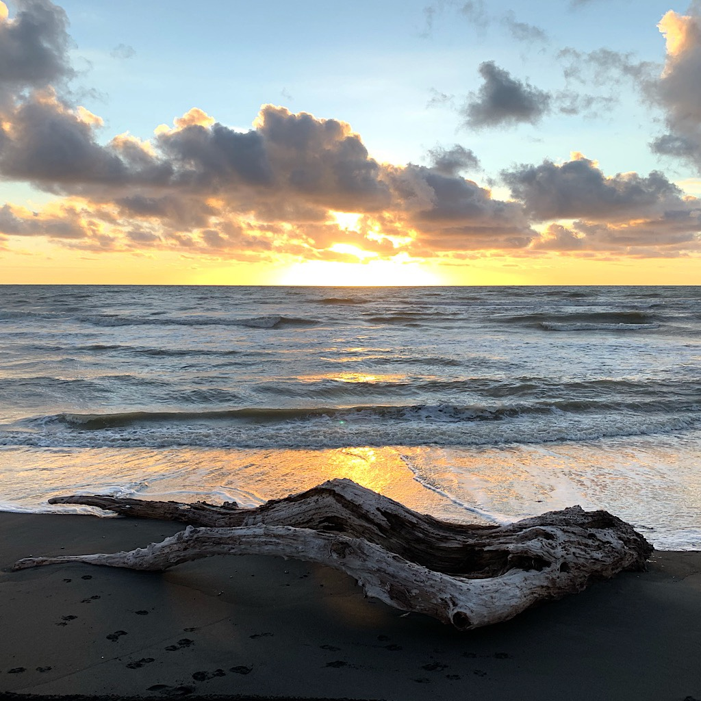Every moment of that afternoon felt magical and this bit of driftwood, like a reclining nude, accentuated its mystical nature.