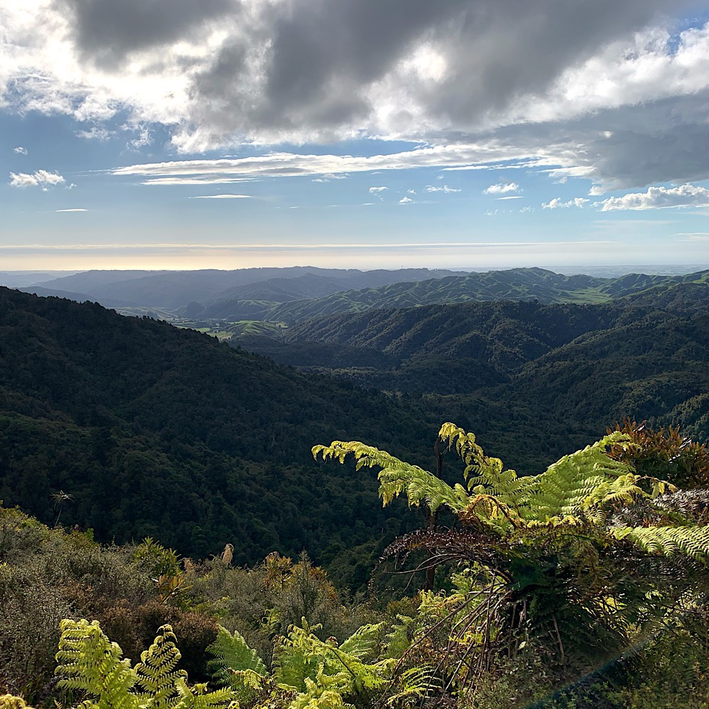 The sky cleared as Blissful reached Archey's Lookout with the Kapiti Coast and Cook Strait in the distance.