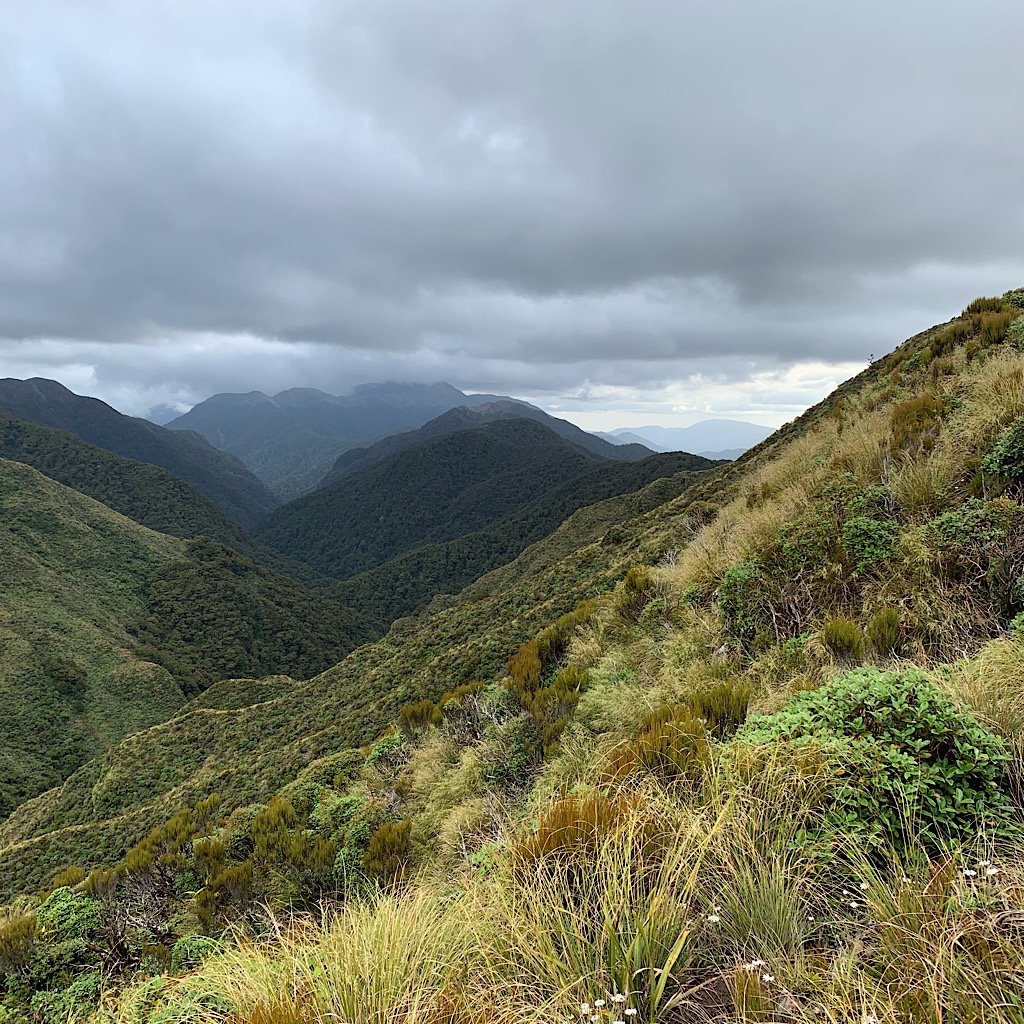 The highest point of the Tararua is Pukeamoamo, but I will only see it from a distance from the Te Aararoa.