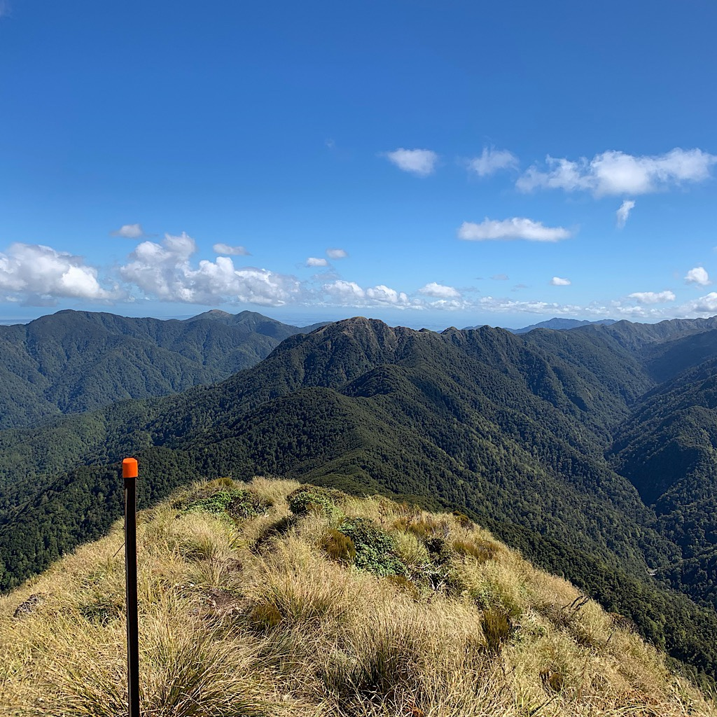 One would think the Tararua is a safe place for tramping on a day like today, only one of a handful each year.