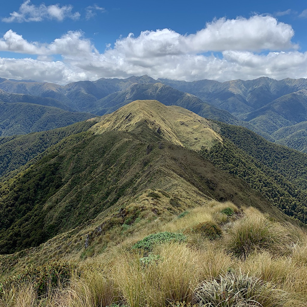 The Tararua Range is the highest point above the the Cook Strait and boasts gale force winds and snow in any season. Oftentimes, people crawl across the ridges.