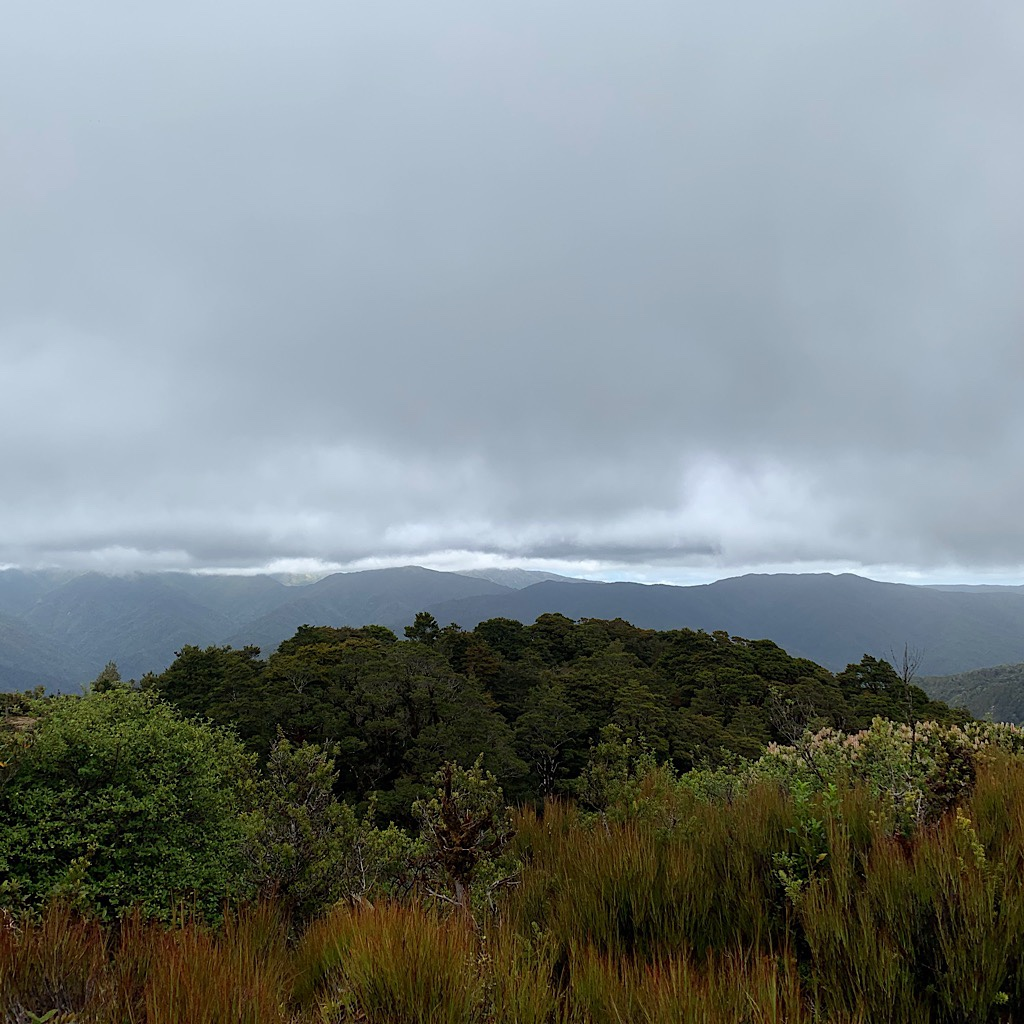 The rain never came, but the air was chilly under low hanging cloud from my lunch spot all alone through Pukeatua.