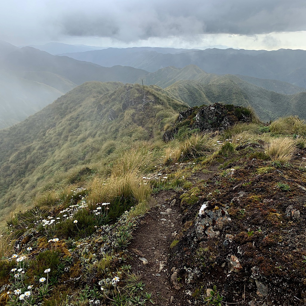 Most of the Tararua Range is crossed on the ridges in mist and high winds.