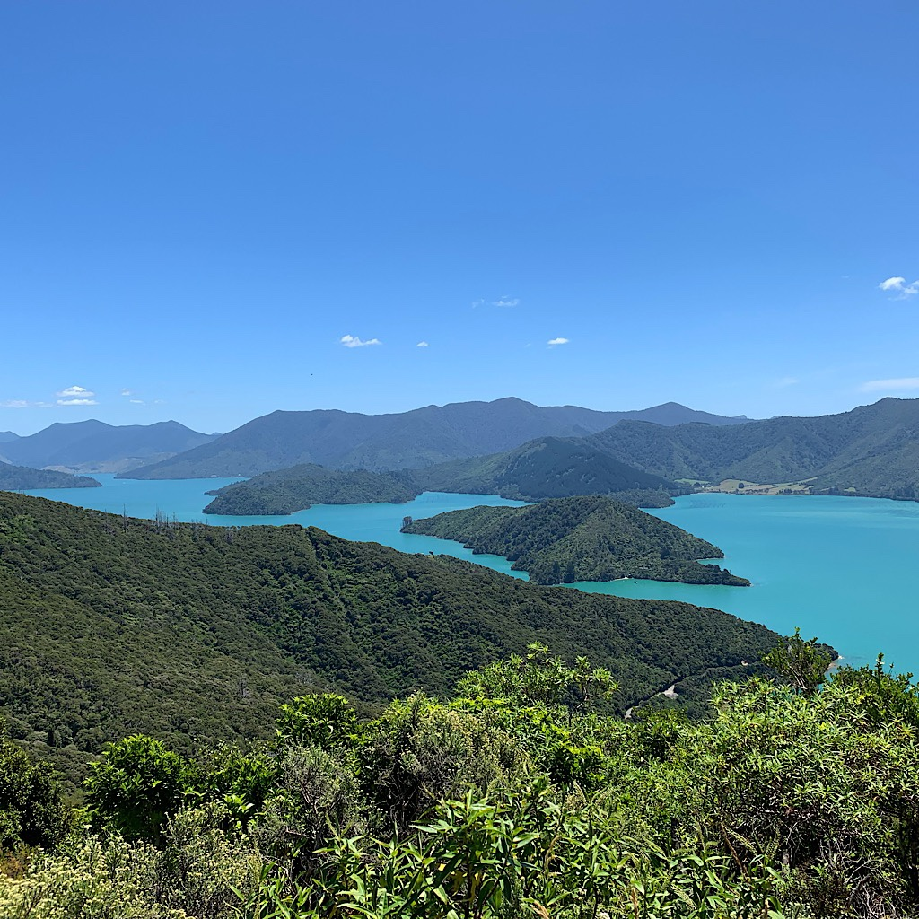 At the Onahau Lookout looking down to Mistletoe Bay, the water looked like a swimming pool.