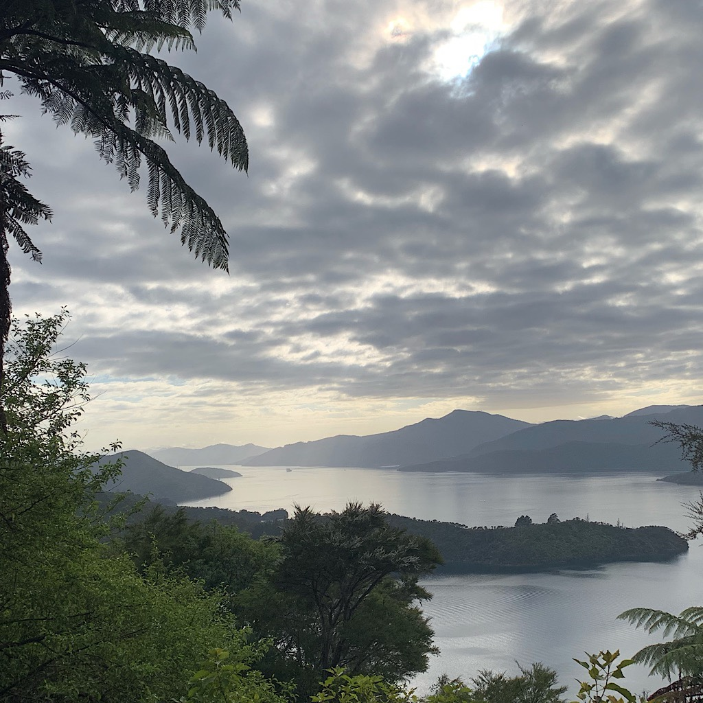 The Queen Charlotte Track follows a narrow isthmus of land between the Kenepuru and Charlotte Sounds.