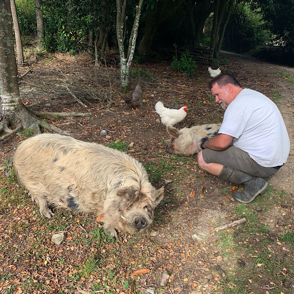 Sam with his pet pigs. Camping at their home was one of the delights of the trail.