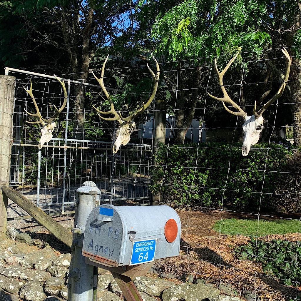 Lawn ornaments on Dalton's Road.