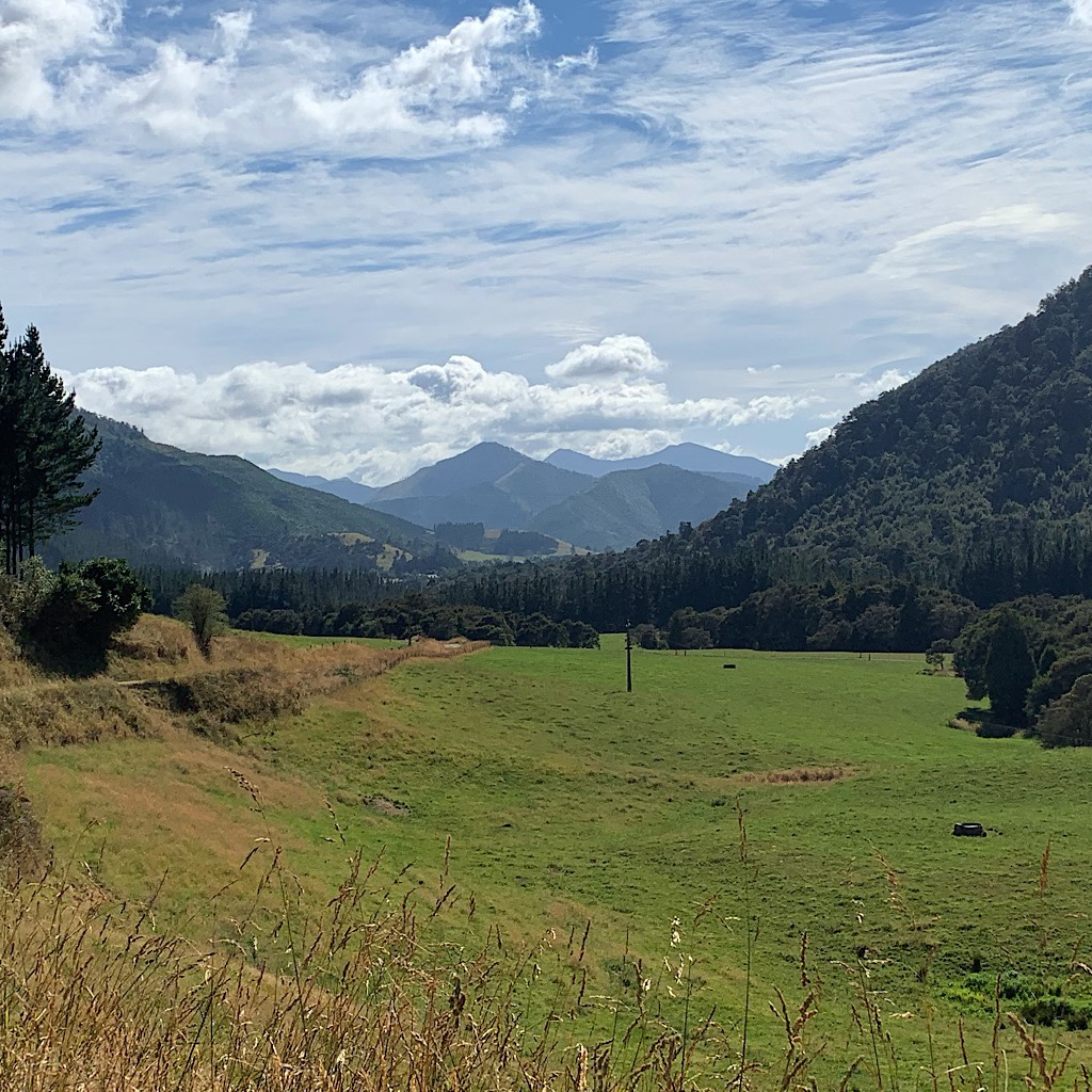 Looking towards the mountains of the Richmond Range from Dalton's Road.