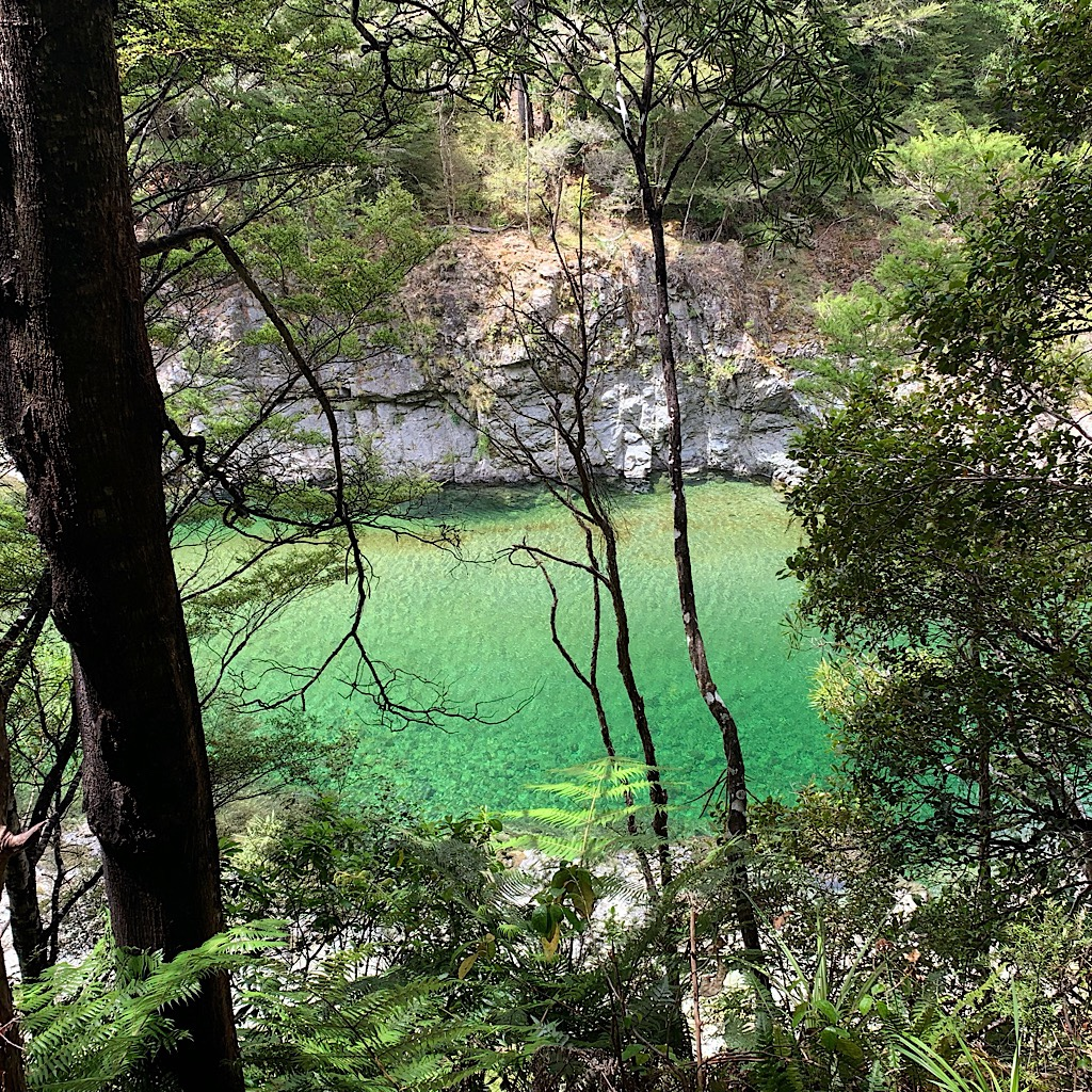 Unearthly green water surrounded by limestone and beech trees.