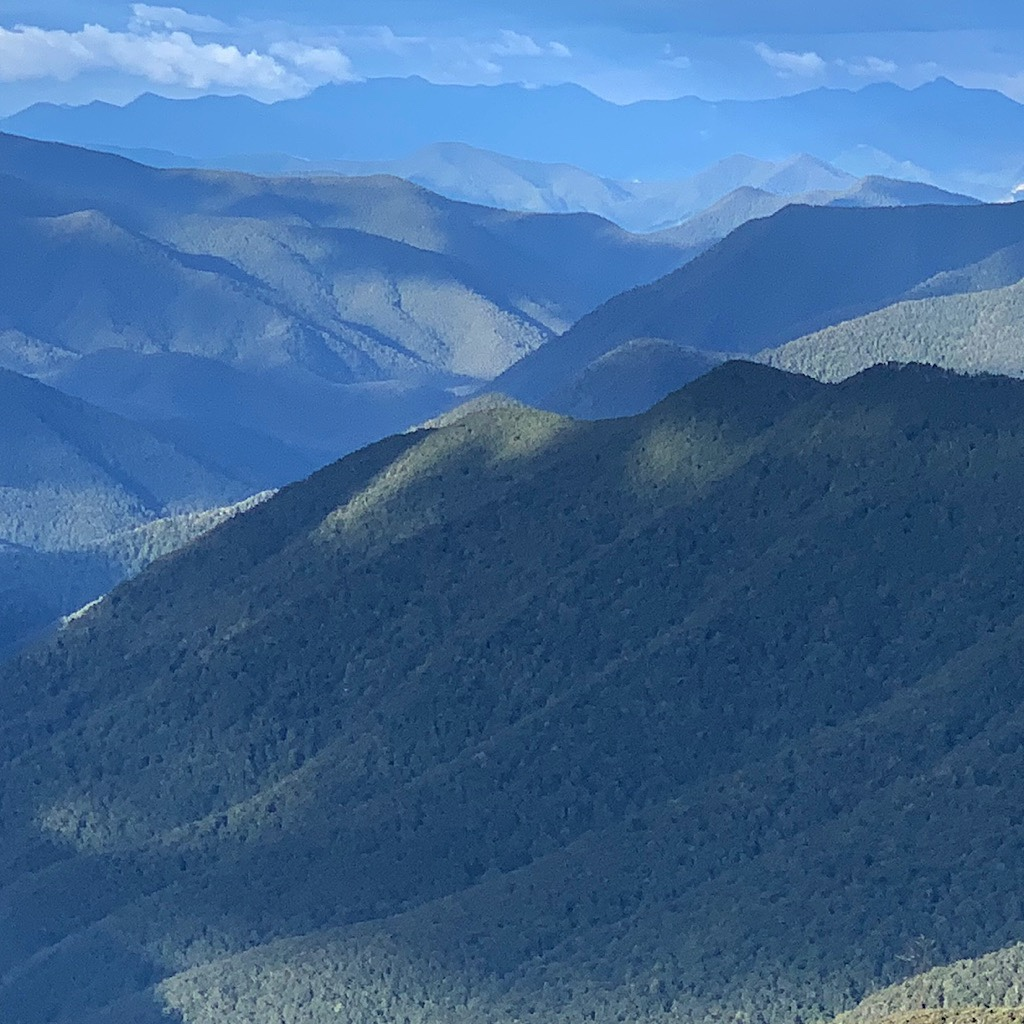 The thick forests give the range a look of rumpled fabric.