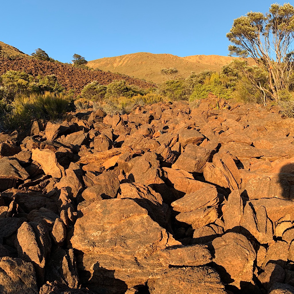The Red Hills are an ultramafic geological area made up of dense magnesium-rich rocks which have been thrust up at least 10 km or more from below the earths crust.