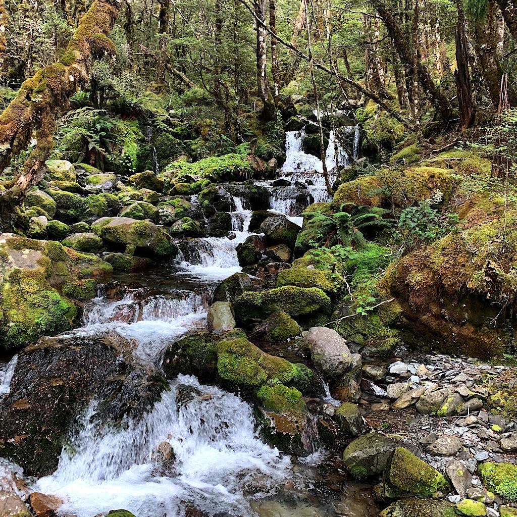 Travers Falls looks like a hobbit habitat.