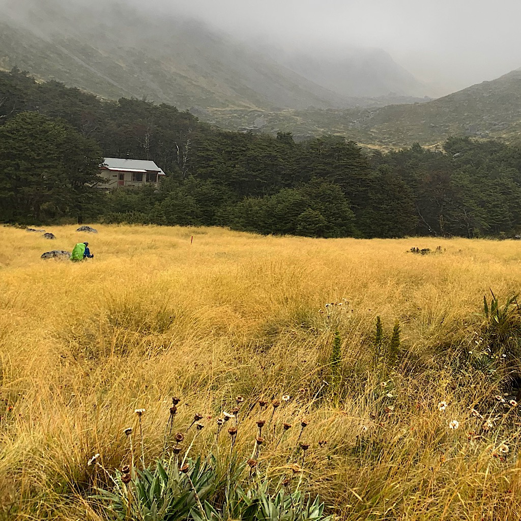 Charley making his way to Upper Travers Hut as the mist came down.