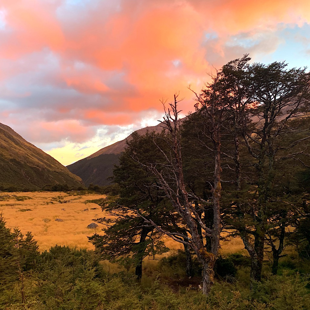 Sunrise from my bunk at Upper Travers Hut.