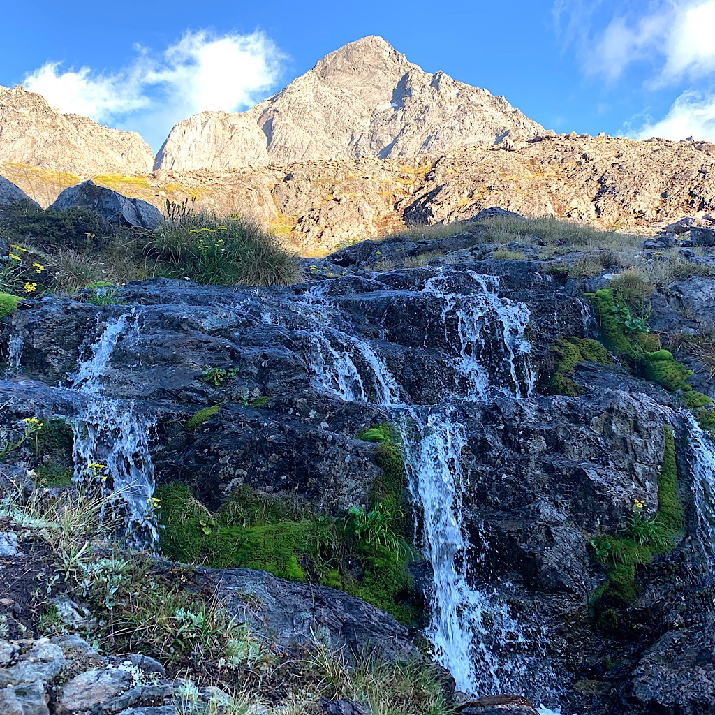 Falls and flowers everywhere delight on the pass.