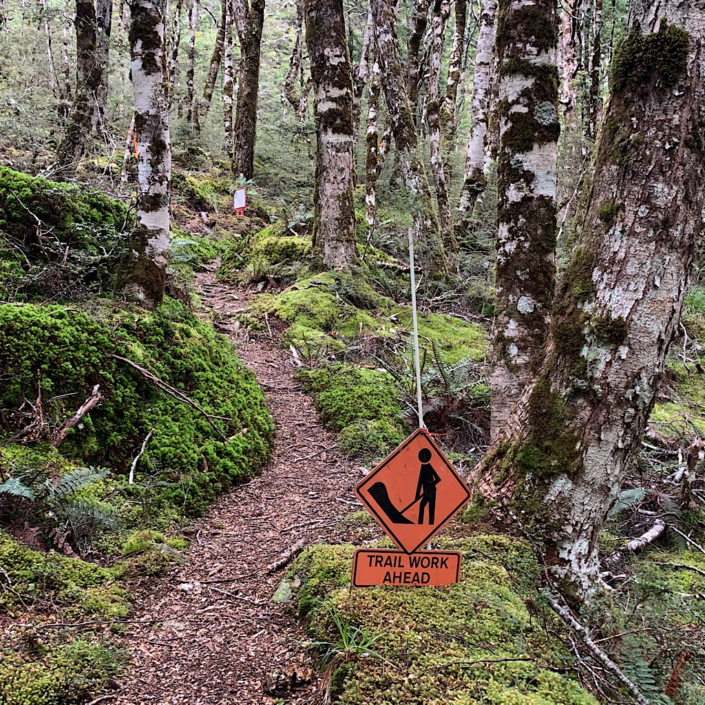 A stunningly gorgeous piece of trail through beach forest that was getting a helping hand. This sign is a rarity on the Te Araroa.