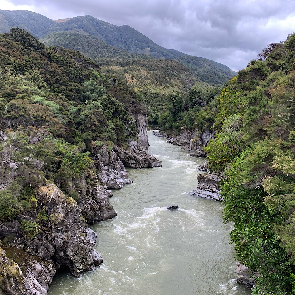 The splendid gorge funneling the Boyle River. The color is chalky and gray from so much rain loosening glacial till.