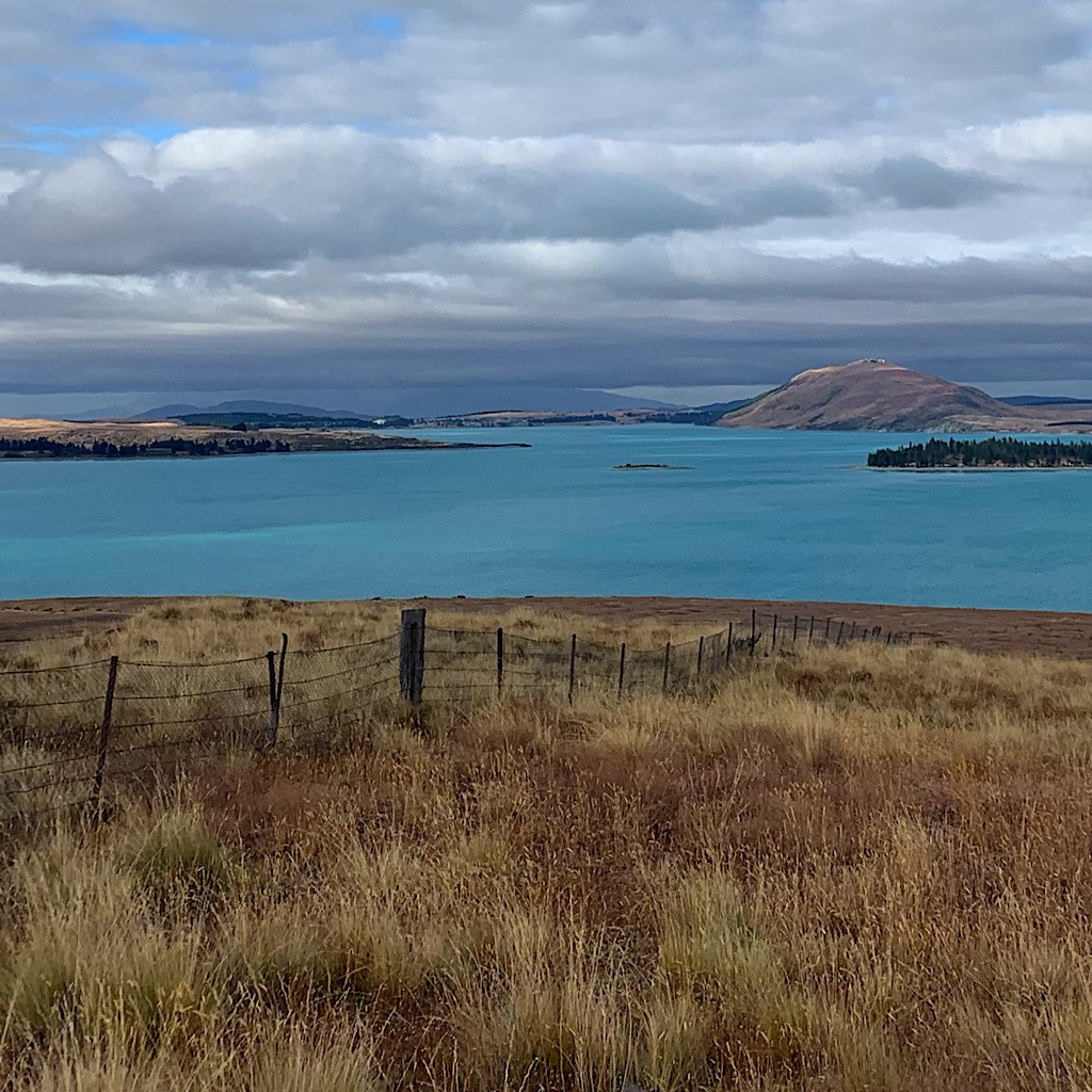Lake Tekapo is a distinctive deep turquoise from glacial silt in the mountains streams feeding it.