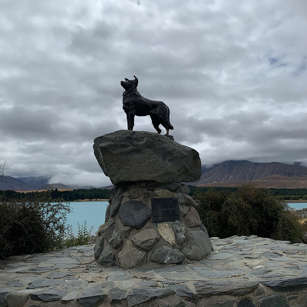 The bronze sheepdog statue commemorating the importance of working dogs to the livelihoods of the South Island shepherds.