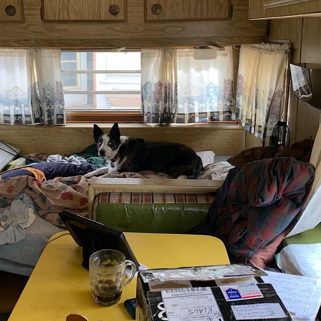 Lucky inside Casey's camper.