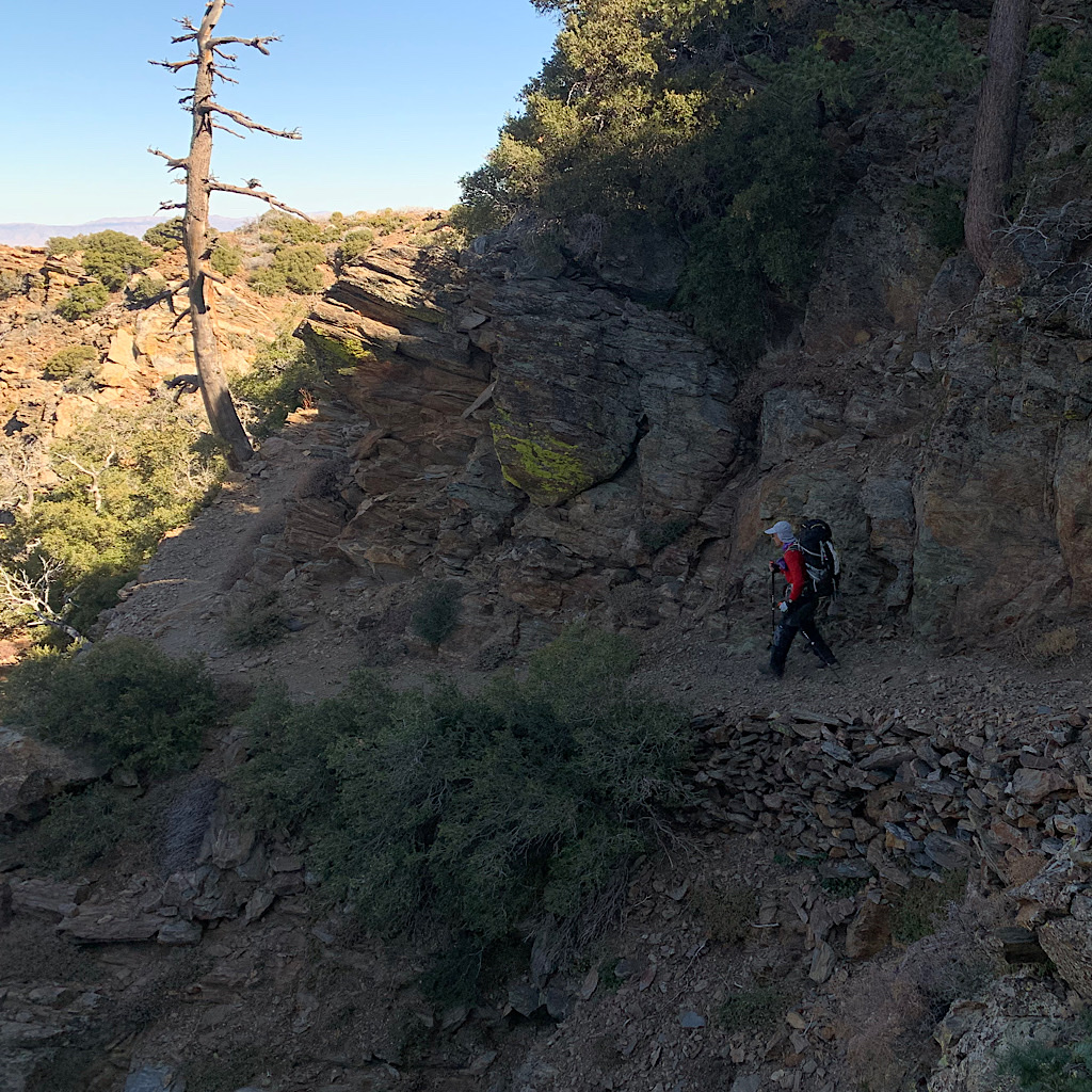 The Pacific Crest Trail is graded fro pack animals.